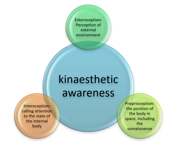 Kinaesthetic Awareness